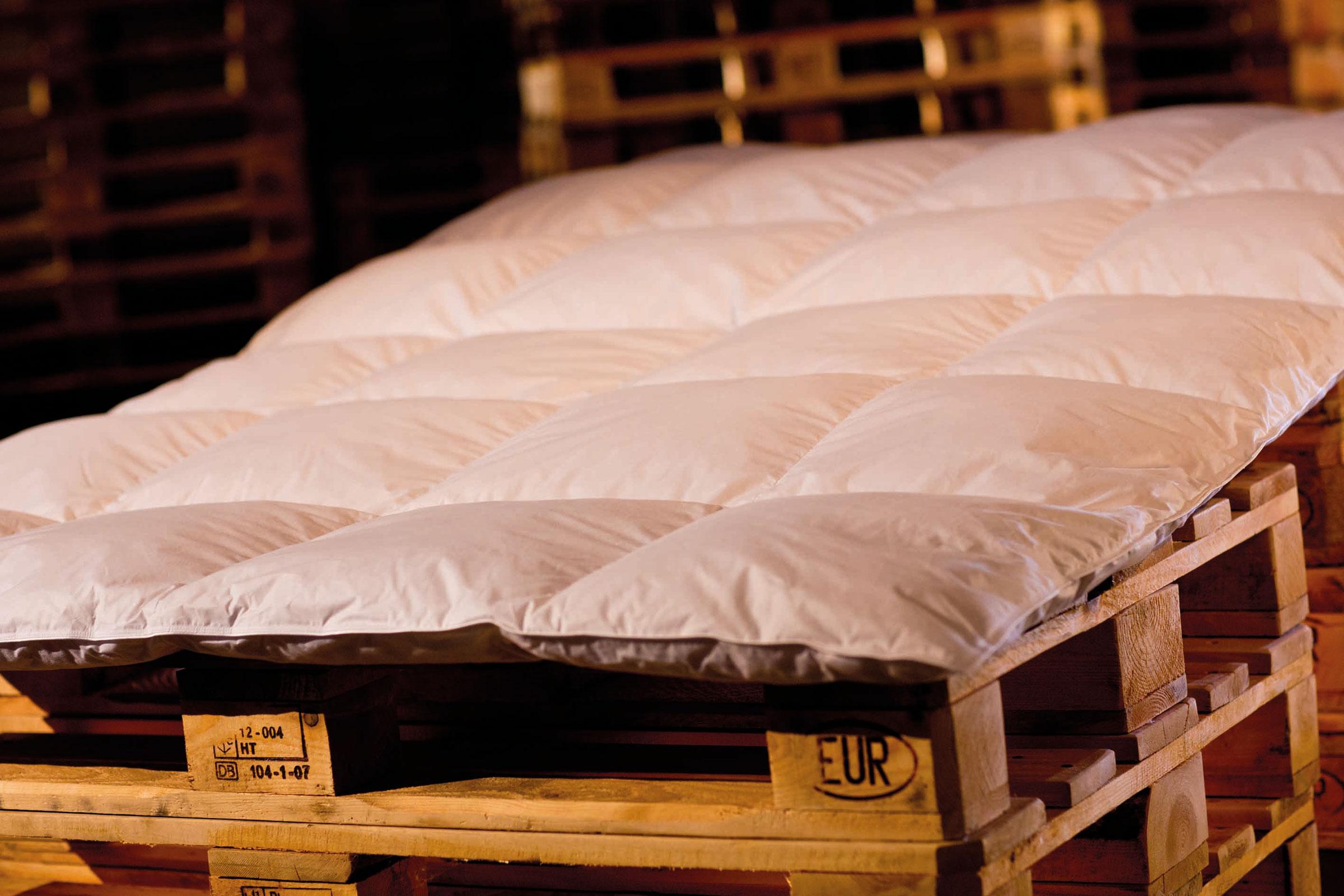 Bettdecken und Kopfkissen - Premium Ganzjahresdecke Bettdecke 155x220 1260Gramm 50 Daunen 50 Federn Serie Moon  - Onlineshop PremiumShop321
