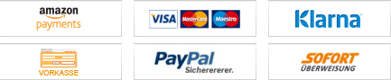 Bezahlsystem und Liefermöglichkeiten